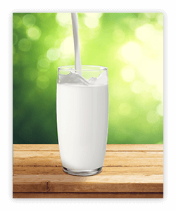 Milk and dairy foods provide benefits to people across the lifespan.