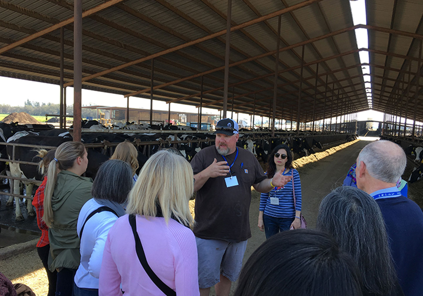 Dairy Advocacy trainings are available to aid in effective storytelling.