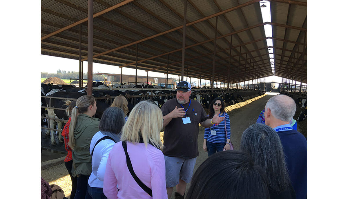 Learn how you can utilize dairy advocacy trainings.
