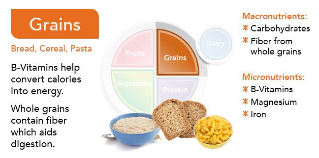 Food Group Slides - grains
