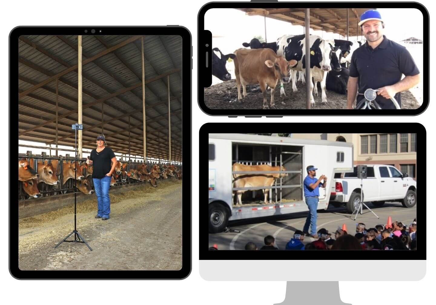 Tune into the Mobile Dairy Classroom video series.